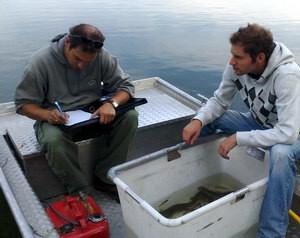 2009 Befischung Heidesee